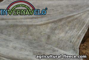 Agricultural Fleece