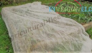 Horticultural fleece